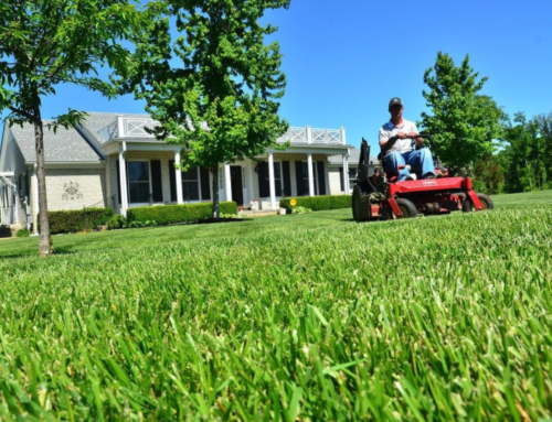 How To Choose The Best Tire Sealant For Lawn Mowers